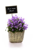 Shield love flowers. Purple flowers in a basket with a shield i love you in german letters Royalty Free Stock Images