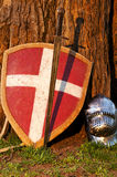 Shield, sword and the helmet near the tree Royalty Free Stock Image