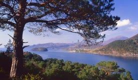 Shieldaig, Torridon, Ecosse Image libre de droits