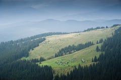 Shielings på en subalpin äng på en lutning av ett berg i de Carpathian bergen Arkivbild