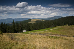 Shielings på en subalpin äng på en lutning av ett berg i de Carpathian bergen Royaltyfria Foton