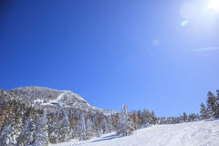Shiga kogen Ski resort Royalty Free Stock Images