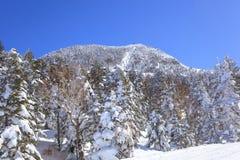 Shiga kogen Ski resort Royalty Free Stock Photo