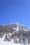 Shiga kogen Ski resort Stock Image