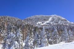 Shiga kogen Ski resort Royalty Free Stock Photos