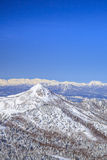 Shiga Kogen in winter Stock Image