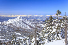 Shiga Kogen in winter Royalty Free Stock Photos