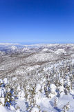 Shiga Kogen in winter Royalty Free Stock Images