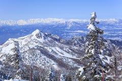 Shiga Kogen in winter Royalty Free Stock Images