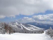 Shigakogen日本山 库存照片