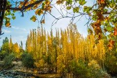 Shigar in autunno Gilgit Baltistan pakistan immagine stock