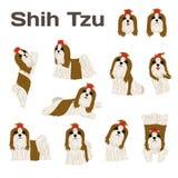 Shih Tzu, cane nell'azione, cane felice royalty illustrazione gratis