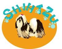Shih-Tzu  Dog Royalty Free Stock Image
