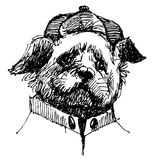 Shih tzu. With shirt and hat, hand drawn vector Stock Images