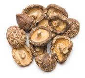 shiitake высушенных грибов Стоковые Фото