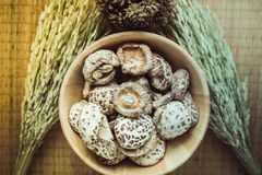 Shiitake on bowl wooden Royalty Free Stock Images