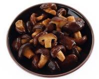 Shiitake fresh mushrooms fried. Royalty Free Stock Photography