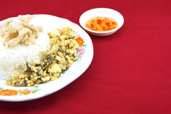 Shiitake mushroom snack and egg fried pickle. Rice , shiitake mushroom snack and egg fried pickle in plate with chilli sauce placed on a red background Royalty Free Stock Photo