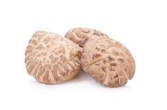 Shiitake mushroom on the White background Stock Photo