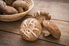 Shiitake mushroom on wooden table Stock Image