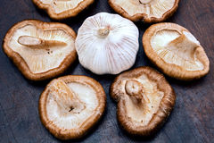 Shiitake mushrooms and garlic Stock Photo