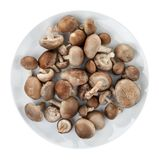Shiitake mushrooms on a round white plate. Isolated on white background Royalty Free Stock Photos