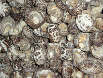 Shiitake Mushrooms. Sold by the pound in an outdoor market Stock Photography
