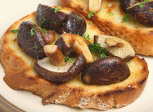 Shiitake Mushrooms on Toast Stock Photo