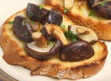Shiitakechampinjoner på rostat bröd Arkivfoto