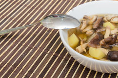 Shiitakechampinjonsoppa med löken och potatisen Arkivfoto