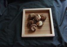 Shiitakepaddestoel op dienbladmat Stock Afbeeldingen