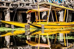 Shikara boat in Dal lake , Kashmir India Royalty Free Stock Photo