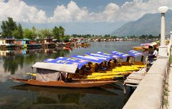 Shikara boats on Dal Lake with houseboats Stock Photos