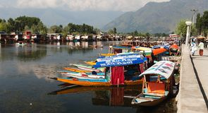 Shikara boats on Dal Lake with houseboats in Srinagar Royalty Free Stock Photography