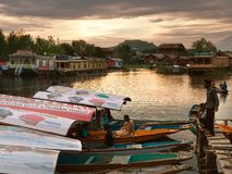 Shikara boats on Dal Lake with houseboats in Srinagar Royalty Free Stock Photography