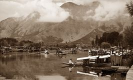 Shikara boats on Dal Lake with houseboats Stock Images