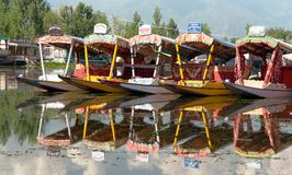 Shikara boats on Dal Lake Royalty Free Stock Photography