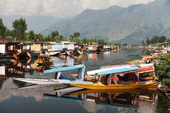 Shikara boats on Dal Lake Royalty Free Stock Images