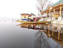Shikara en el lago Nigeen en Srinagar fotografía de archivo libre de regalías