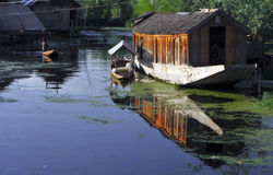 Shikara en house-boat Stock Afbeelding