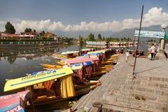 Shikara fartyg på Dal Lake med husbåtar i Srinagar Royaltyfri Bild
