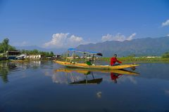 Shikara sails amidst Houseboats, Dal Lake Stock Images