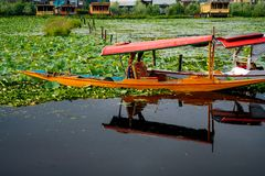 Wooden boats shikara on Dal Lake in Kashmir stock photography