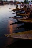 Shikaras i Dal Lake Arkivfoton