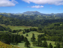 Shikotan island landscape stock photo