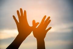 Shilhouette-Hände, die in Form des Vogels schaffen Lizenzfreie Stockfotografie