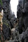 shilin lasowy kamień fotografia stock