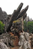 Shilin Stone Forest Royalty Free Stock Image