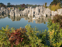 Shilin Stone Forest Royalty Free Stock Photo