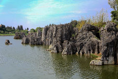 Shilin stone forest in kunming yunnan. China Royalty Free Stock Photo